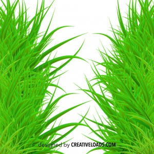 Vector Grass Frame